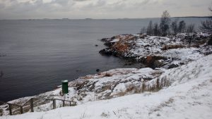 Isla de suommelina nevada